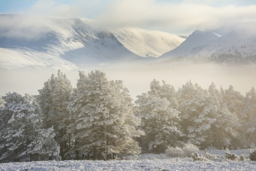 Mid-winter Cairngorms